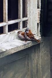 54_SPARROWS ON WINDOW