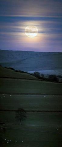 Andrew-Greenwood-full-moon-landscape-190311_1300579898_med