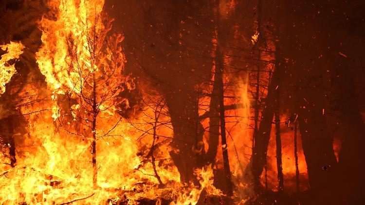 lat-king-fire-photos1-wre0022108251-20140917