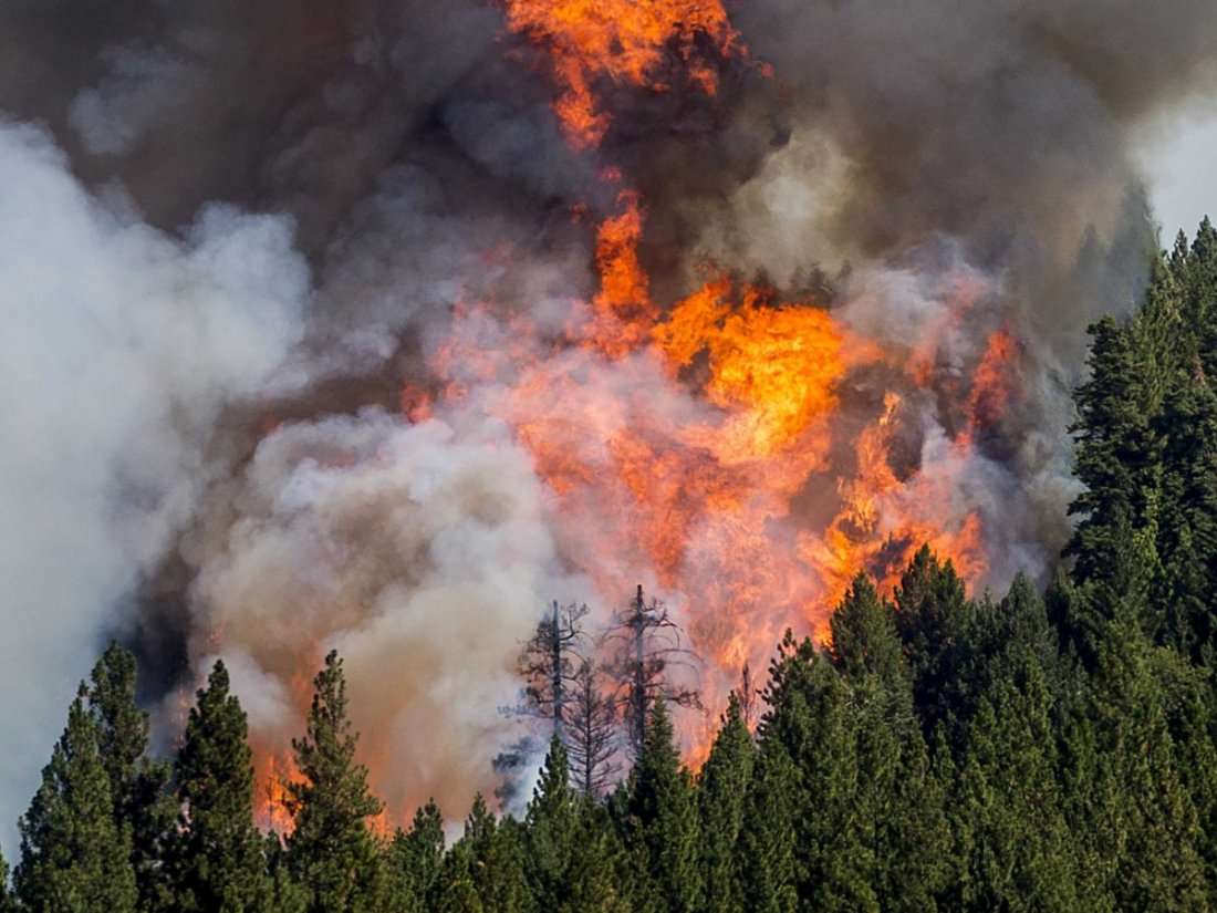sacramento-california-wildfire-5